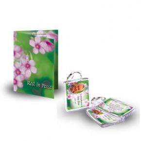 Pink Primroses Standard Package