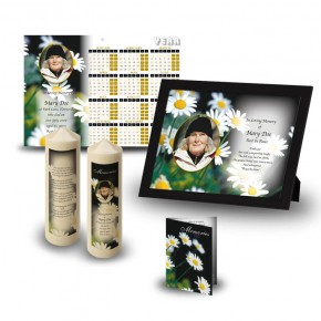 Daisies Wall Package