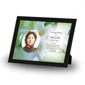 Wild Roses Framed Memory