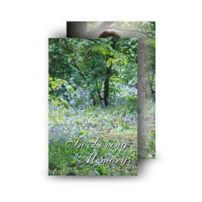 Bluebells Castle Coole Co Fermanagh Wallet Card