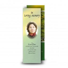 Stream Co Laois Bookmarker