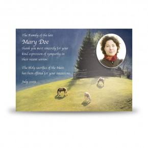 Grazing Horses Acknowledgement Card