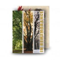 Tree Seasons Standard Memorial Card
