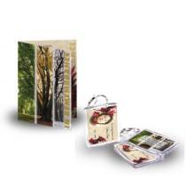 Tree Seasons Standard Package