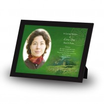 Irish Roots Framed Memory