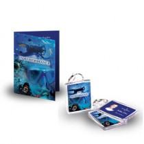 Scuba Diving Standard Package