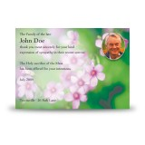 Pink Primroses Acknowledgement Card