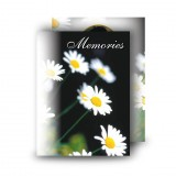 Daisies Standard Memorial Card