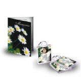 Daisies Standard Package