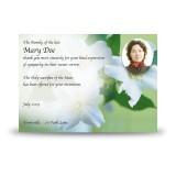 Wild Roses Acknowledgement Card
