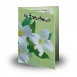 Wild Roses Folded Memorial Card