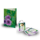 Purple Petunia Standard Package