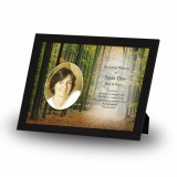 Woodlane Co Longford Framed Memory