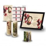 Tree Seasons Wall Package