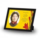 Late Spring Gladioli Framed Memory