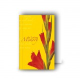 Late Spring Gladioli Wallet Card
