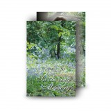 Bluebells Castle Coole Co Fermanagh Wallet Card