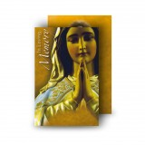 Our Lady At Prayer Wallet Card