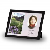 Flowers Field Mountains Framed Memory