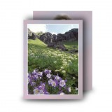 Flowers Field Mountains Standard Memorial Card
