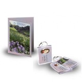 Flowers Field Mountains Standard Package