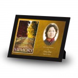 Autumn Walkway Framed Memory