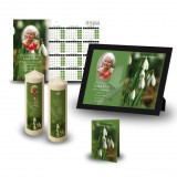 Snowdrops Wall Package