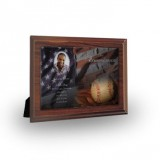 USA Baseball Plaque